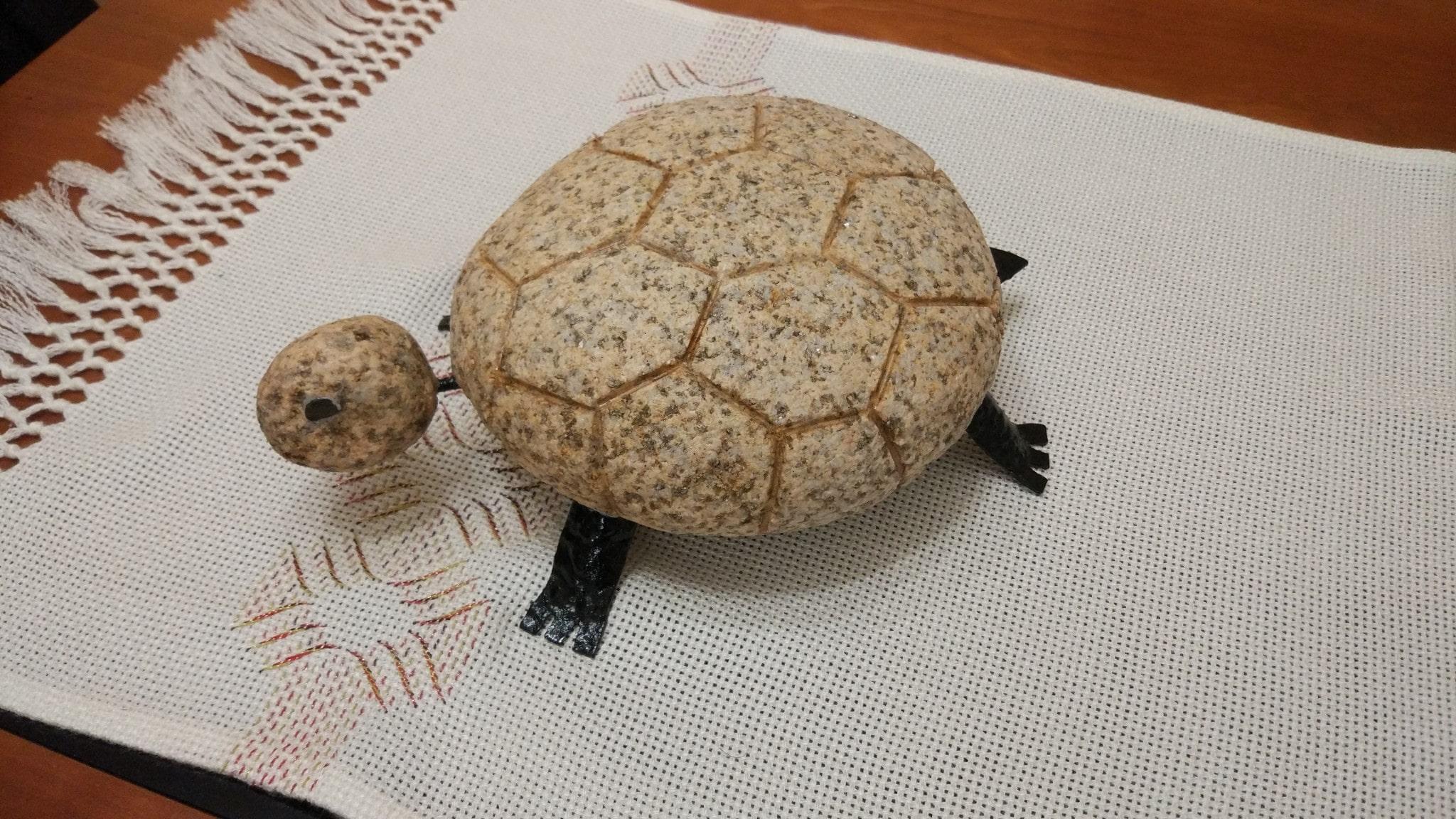 Tartaruga de pedra